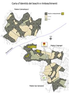 Planimetria-boschi