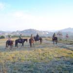 equitazione 4