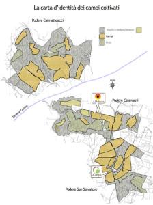 Planimetria-campicoltivati (1)